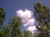 Cloud Hearts 5 21 12 (8)